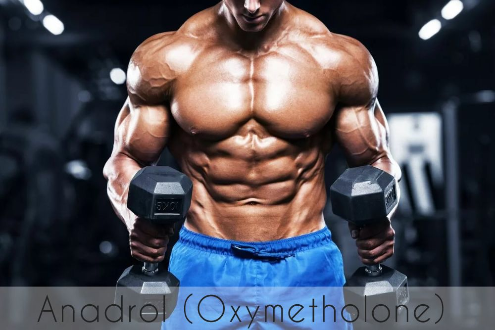 Anadrol (oxymetholone, anadrol). Useful information