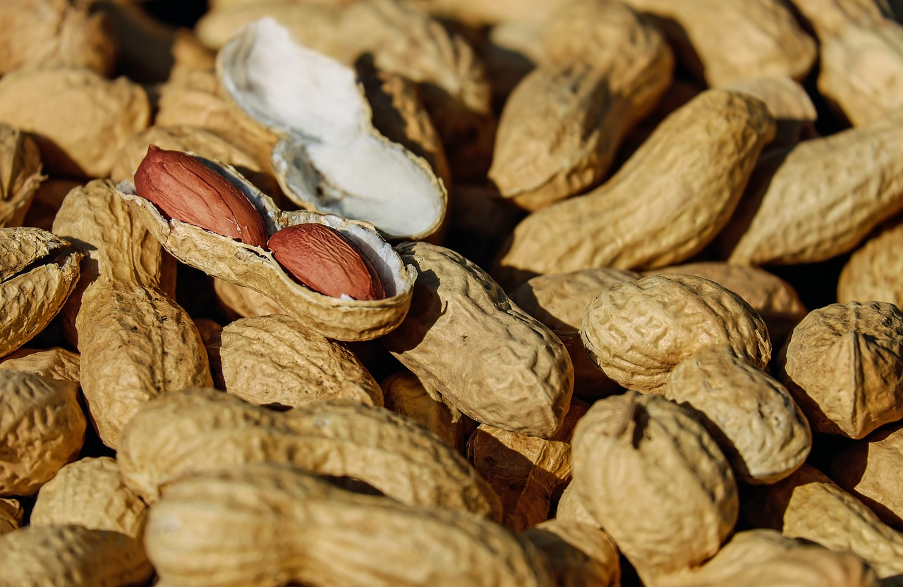 How Nuts Increase Potency